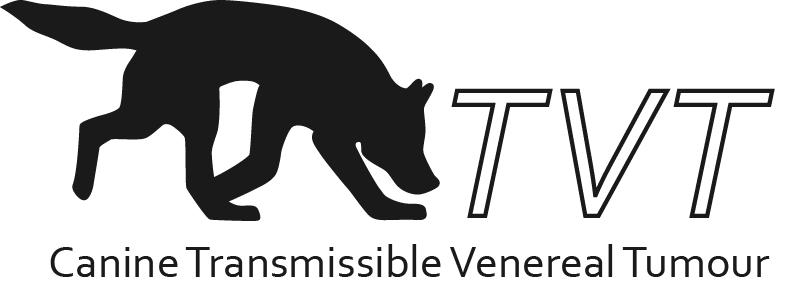 CTVT logo